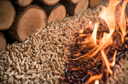 Use wood pellets to replace coal in power generation
